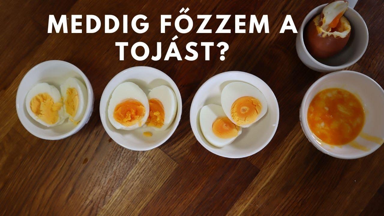 rothadt tojás szaga a szájból mit kell tenni az ascariasis diagnózisa