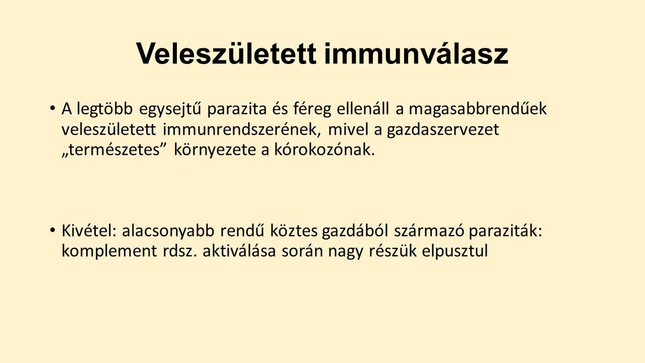 Termékek - Peptid bioregulátor - Peptidek.hu