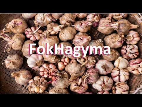 Nelma stroganina paraziták - Pontyféreg pontyban. Milyen tabletták segítenek a férgektől