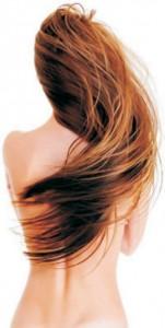 haj ápolás