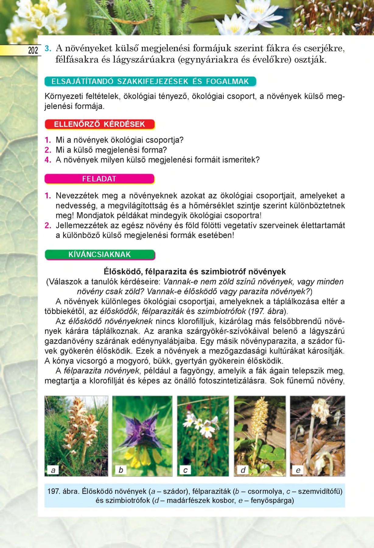 klorofill parazita kezelés