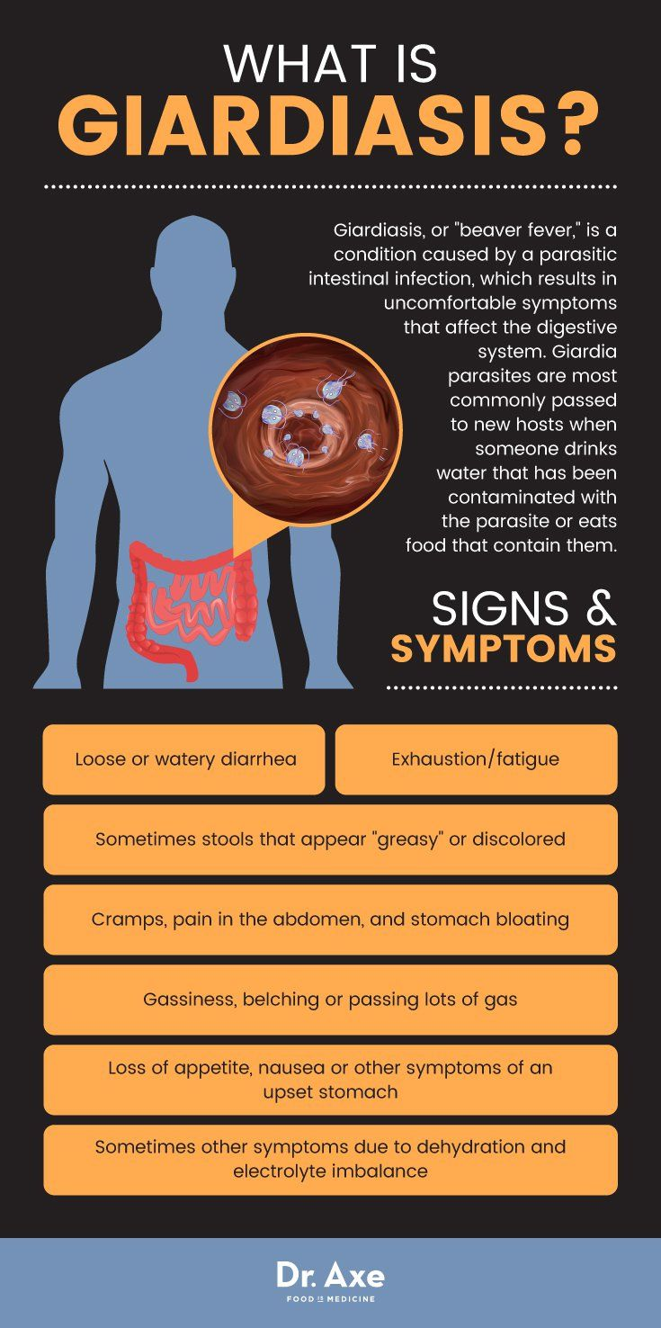 Felnőtteknél az opisthorchiasis és a giardiasis tünetei - Belfereg jarvany