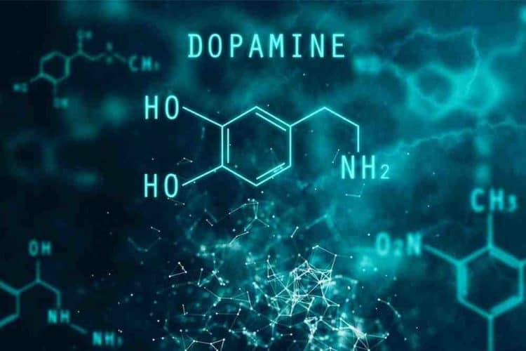 a test aktivitását növelő gyógyszerek
