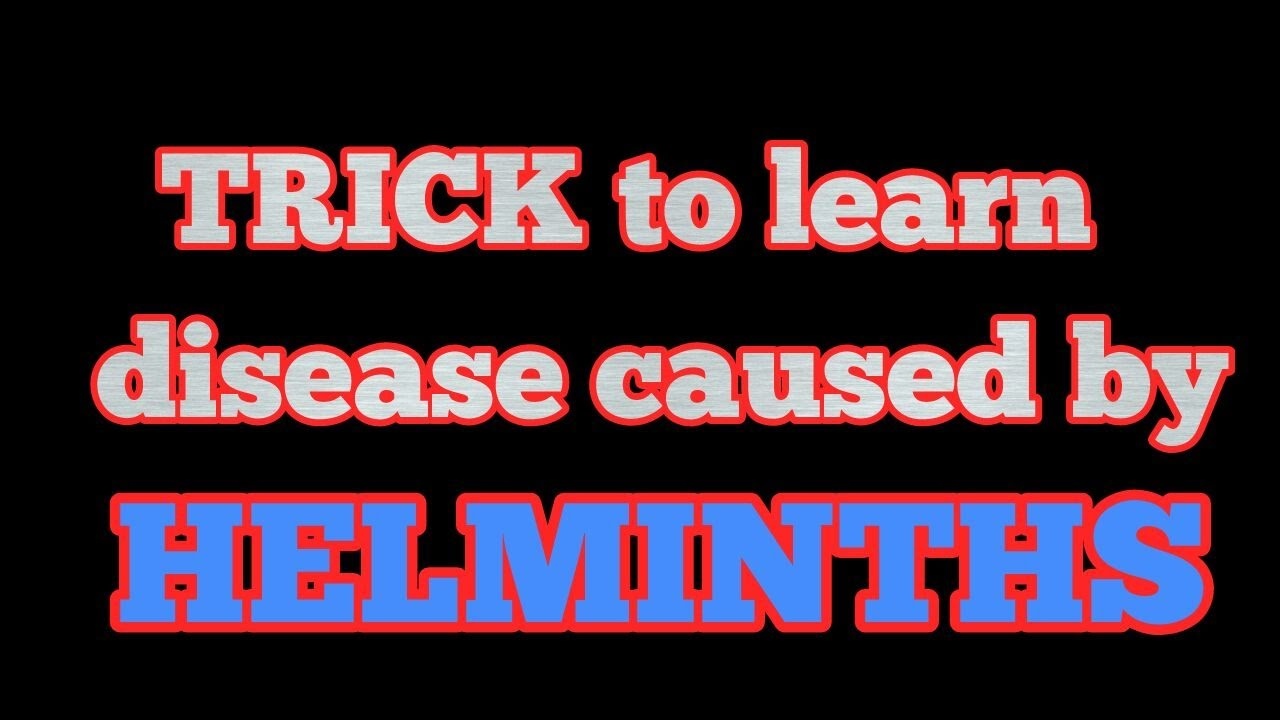 a helminthiasis megelőzésének módszerei szarvasmarha galandféreg leírása