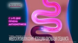 Sejtszervecske – Wikipédia