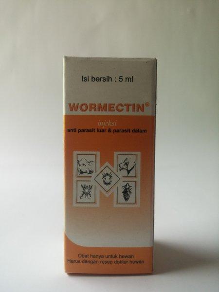 Hogyan lehet eltávolítani a pinworms t felnőtteknél