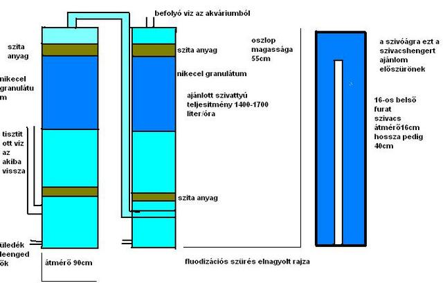 parazita a neonokon ascaris fejlesztési séma