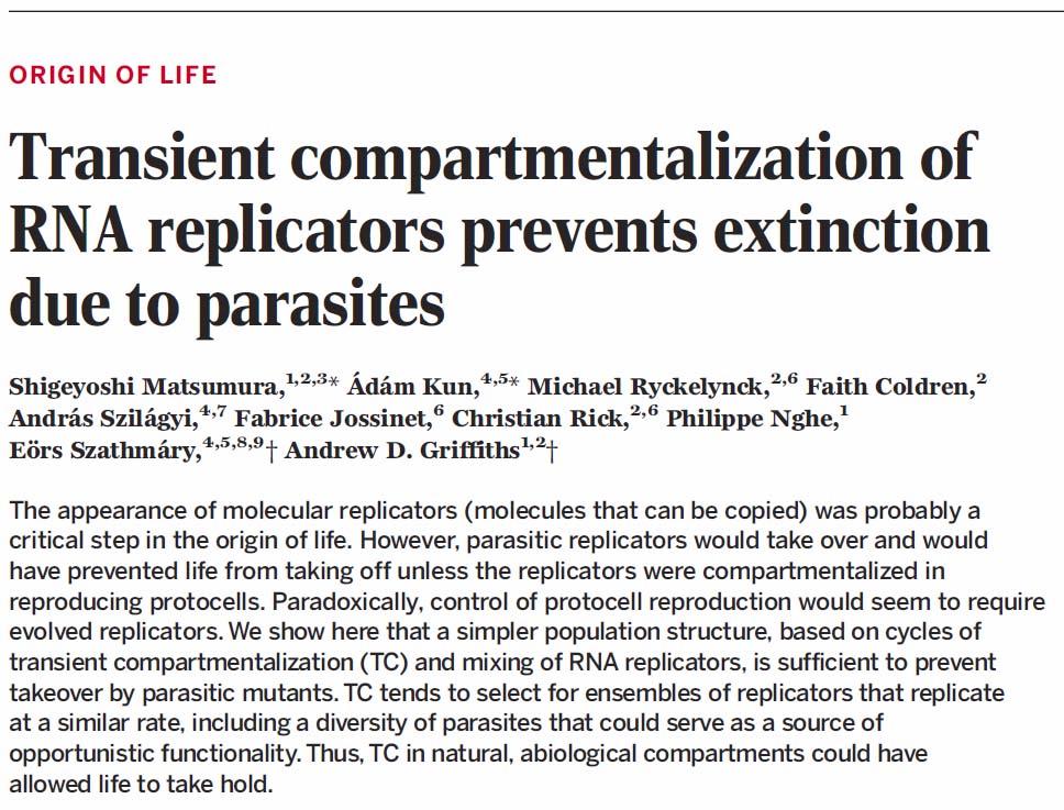 új gyógymód a paraziták ellen bélféreg kezelése helmintákból