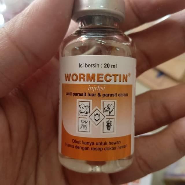 a pinwormok gyógyszerének neve a paraziták kiűzésének eredménye