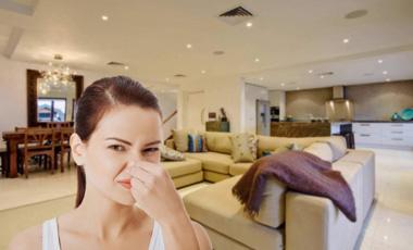 Penész szag, dohszag ellen ózonnal | Ozon Clean