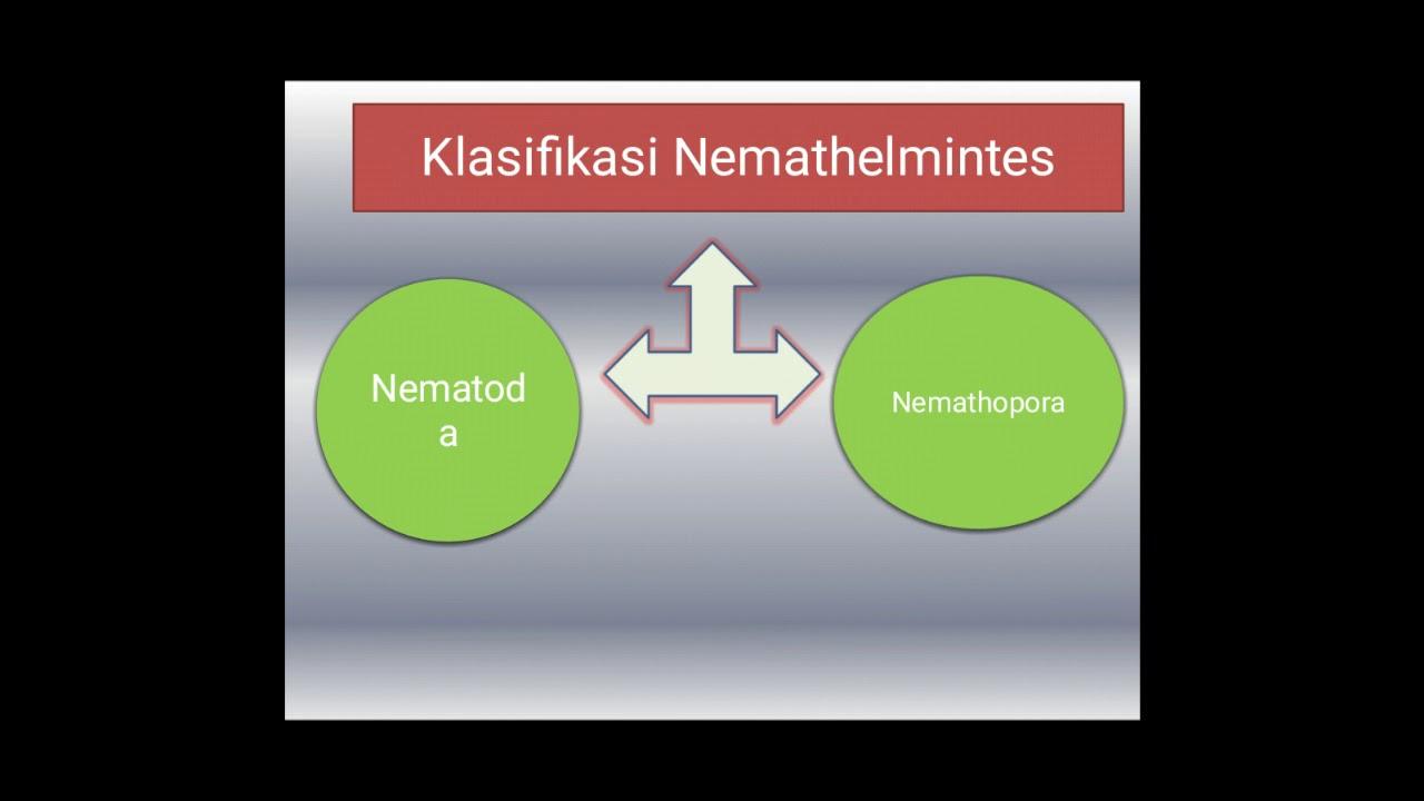 A bélparaziták gyógyszereinek neve