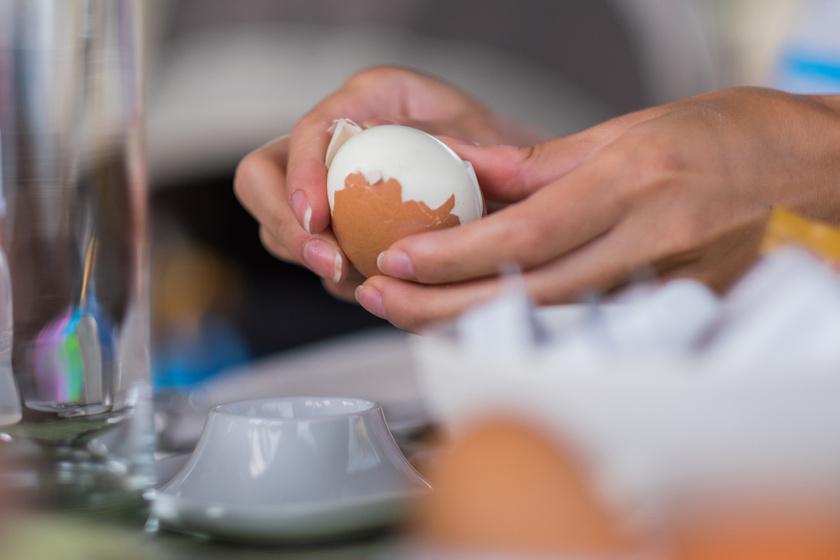 rothadt tojás rossz lehelet)